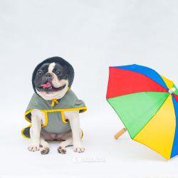 Capa de Chuva Tamanho P